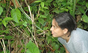 Paula Alejandra Trillo